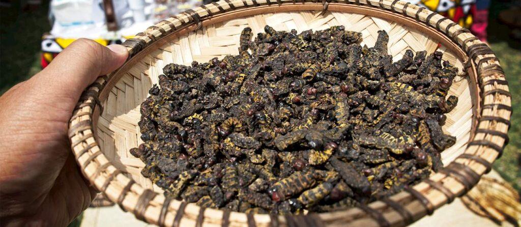 أشهر المأكولات الأنغولية في أنغولا
